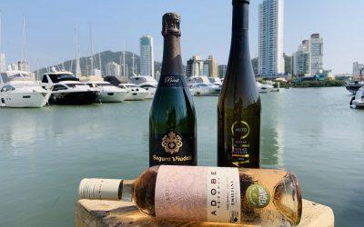 Vida a bordo: dicas de vinhos para beber na primavera